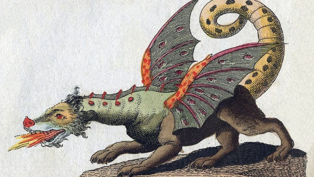 the-dragon-files-do-humans-have-dragon-dna