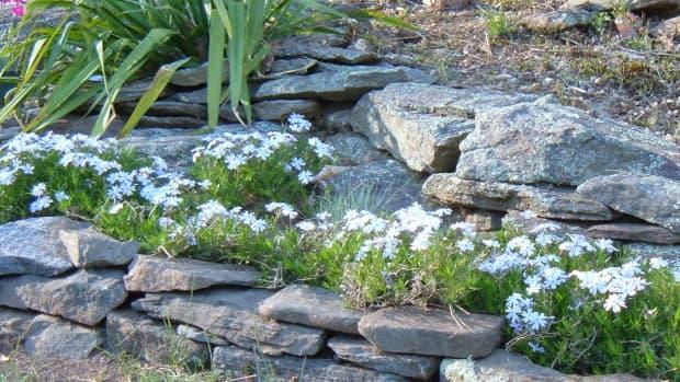 gardening-with-rocks-designing-a-rock-garden