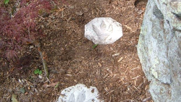 garden-stepping-stones-jurassic-path