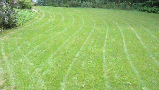 how-to-sharpen-lawn-mower-blades