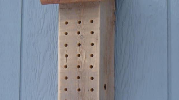 mason-bee-house-plans