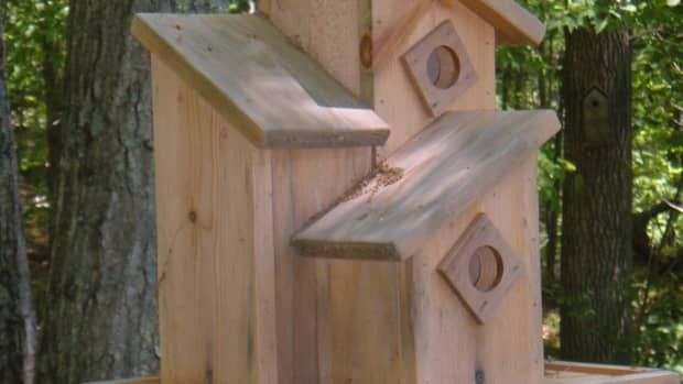 wood-bird-house-design