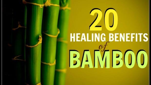 20-healing-benefits-of-bamboo