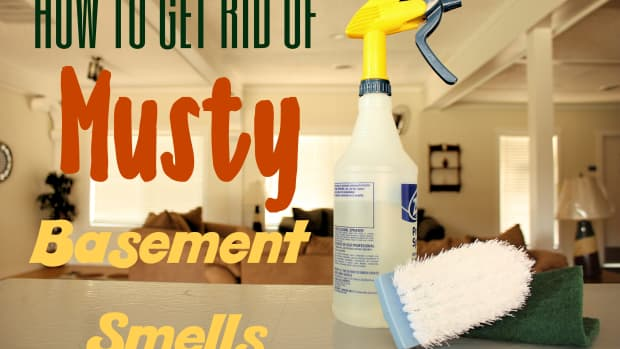 musty-basement-rehab-clearing-out-mold-and-mildew-smells