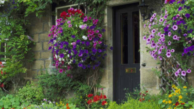 traditional-cottage-garden