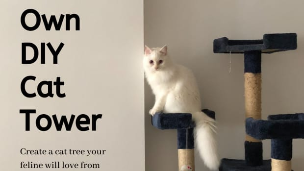 build_your_own_cat_tower
