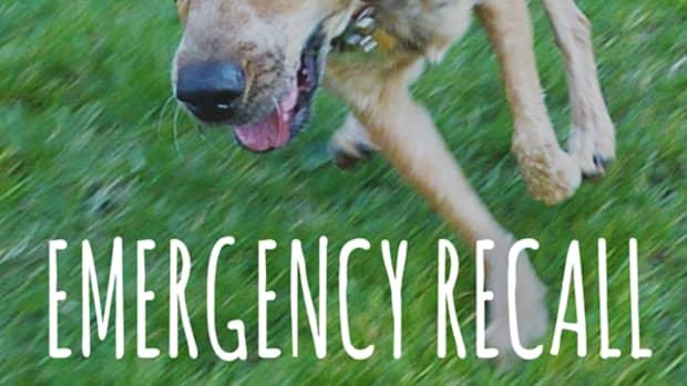 emergency-recall