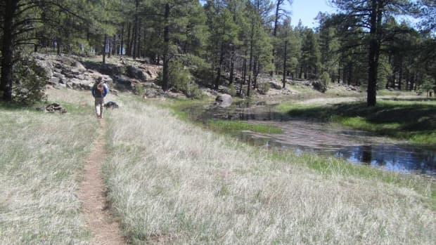 best-short-hikes-in-flagstaff-arizona