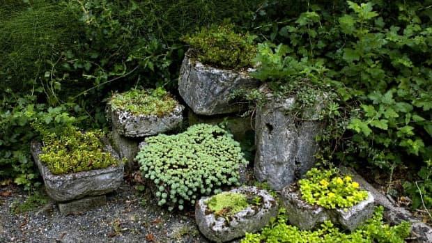hypertufa-garden-container