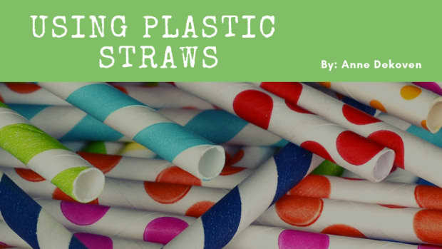 5-eco-friendly-alternatives-to-using-plastic-straws