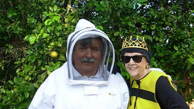 a-beekeepers-life-a-labor-of-love