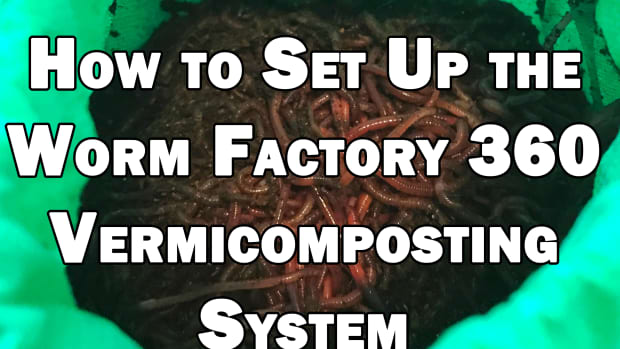 how-to-set-up-the-worm-factory-360-vermicomposting-system-getting-started-with-worm-composting