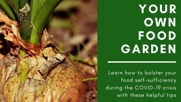 grow-an-emergency-garden-during-coronavirus-crisis