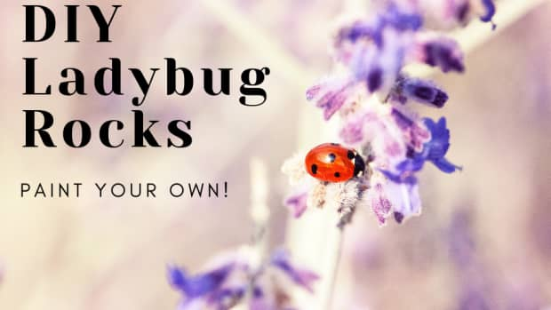 how-to-paint-ladybug-rocks