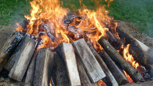 how-to-burn-out-a-tree-stump-the-easy-way