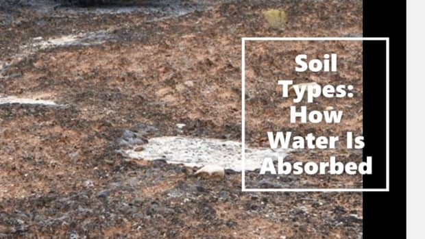 soil-types-water-absorbed