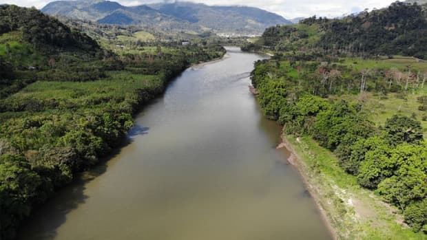 the-amazon-river-life-blood-of-the-rainforest