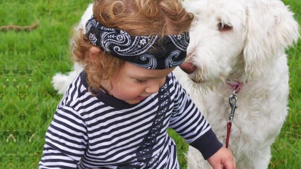 do-pets-prevent-asthma