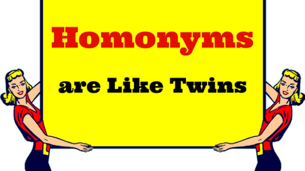 the-naughty-grammarian-homonyms-homographs-homophones