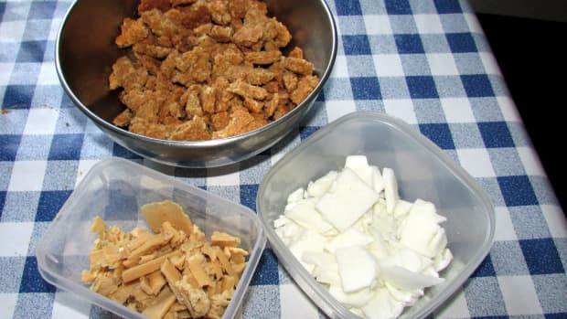 homemade-dog-treats-dogs-treat-recipes-peanut-butter-healthy-food-for-dogs-how-to-make-ideas-quick
