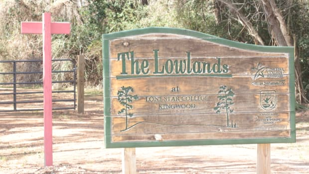 the Lowlands trail head