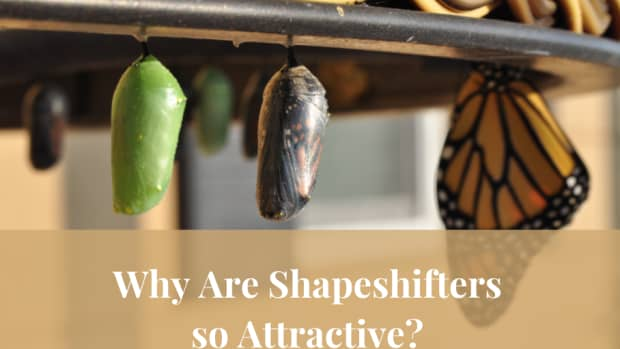 what-is-so-attractive-about-shapeshifters