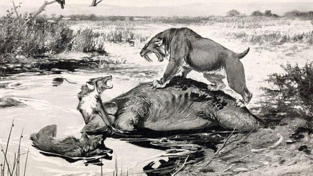 prehistoric-predators-of-ice-age-north-america