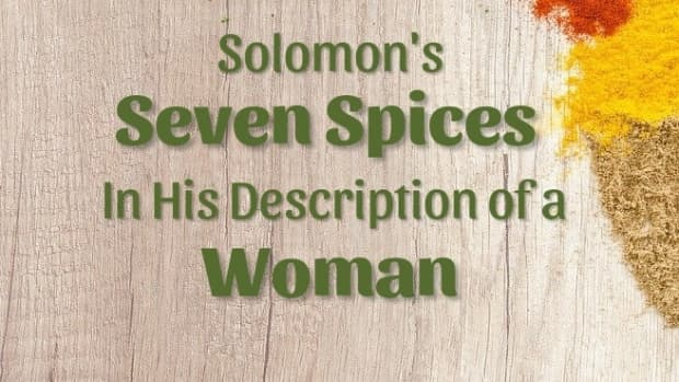 what-spices-are-big-girls-made-of