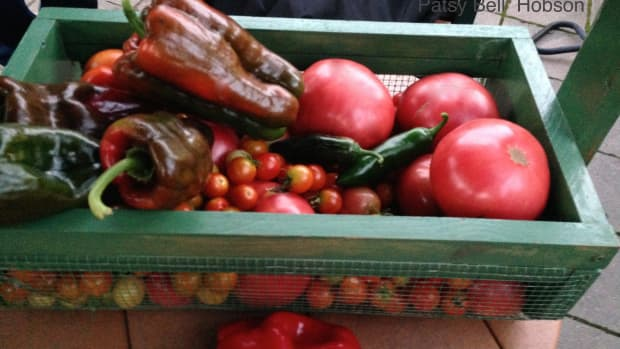 more-ways-to-preserve-tomatoes-and-pappers