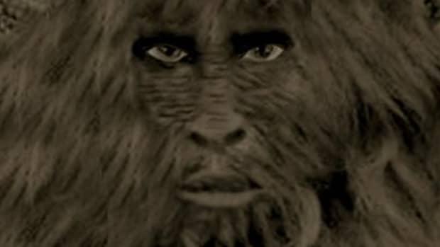 the-honey-island-swamp-monster-bayou-bigfoot