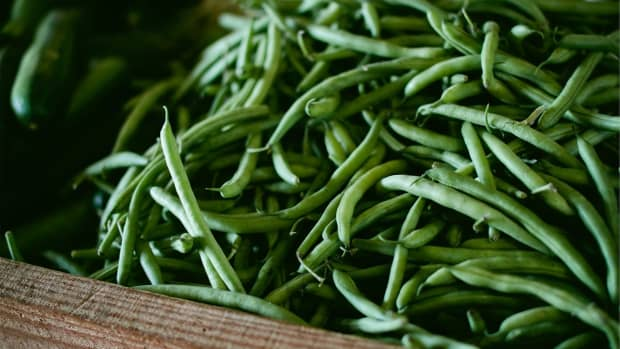all-about-green-beans-not-just-a-cream-of-mushroom-soup-side-dish