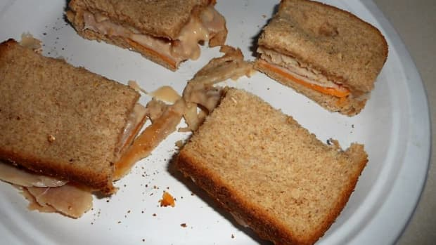 minnesota-cooking-toasted-cheese-and-turkey-from-your-toaster-oven
