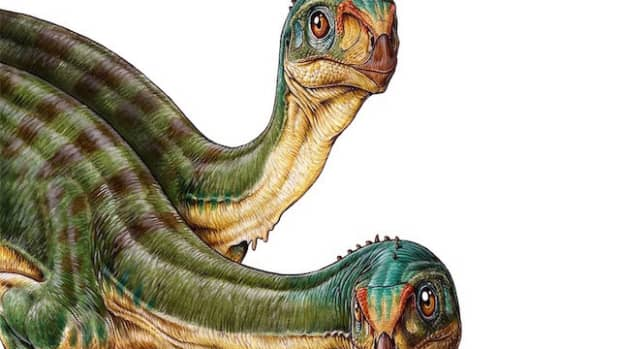 dinosaurs-of-the-year-2015-edition