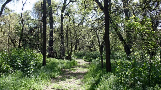 easy-hikes-in-san-joaquin-county-california