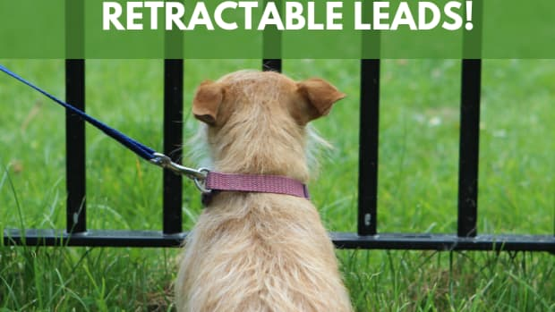 say-no-to-extendable-leads