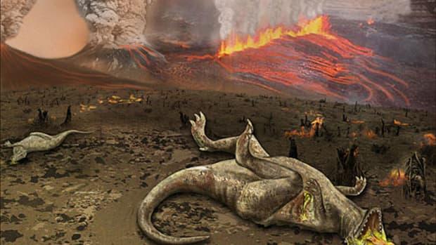 exploring-extinction-an-interview-with-gerta-keller