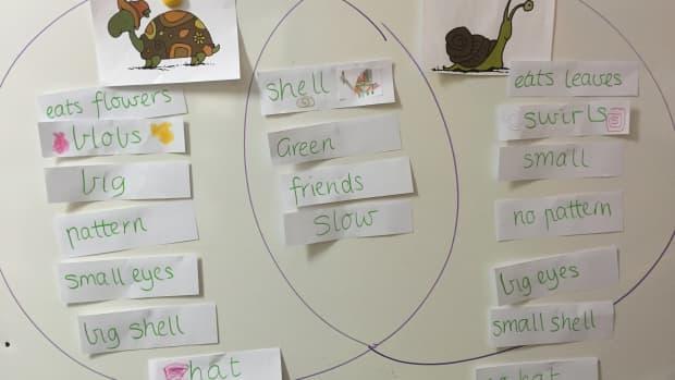 every-teachers-best-friend-venn-diagram-as-a-learning-tool