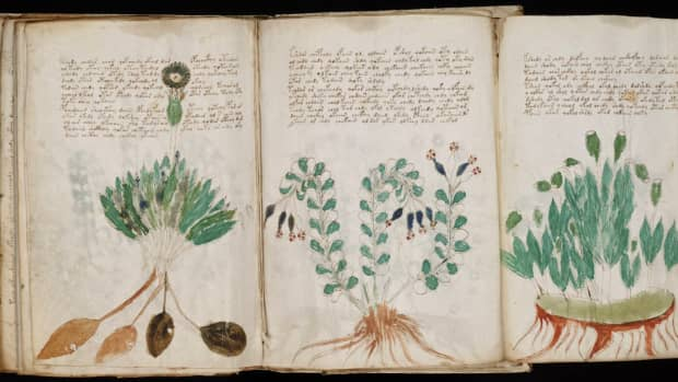 trying-to-make-sense-of-the-voynich-manuscript-a-brief-history