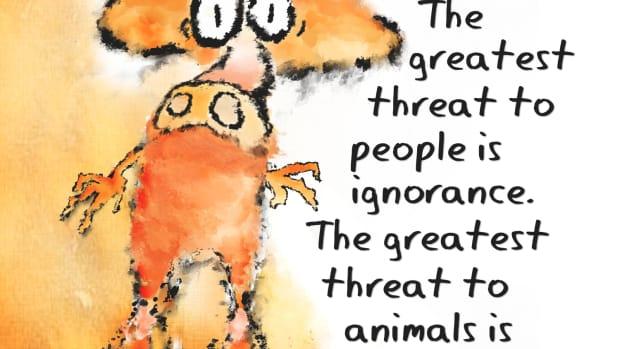 an-analysis-of-tom-regans-animal-rights-human-wrongs