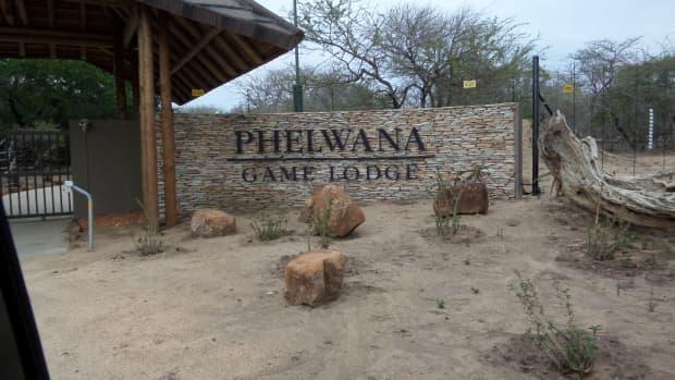 phelwana-game-lodge-hoedspruit-kruger-park-review