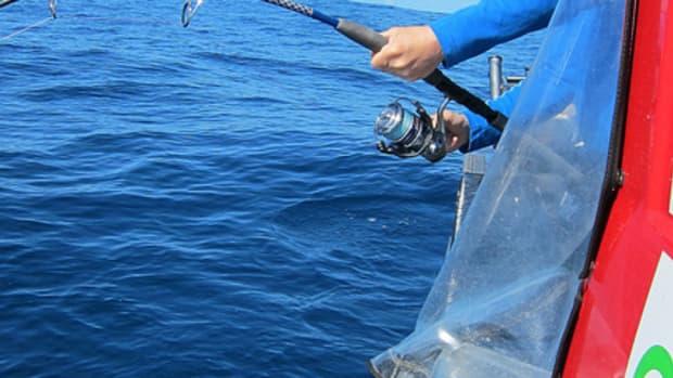 top-3-best-saltwater-spinning-reels