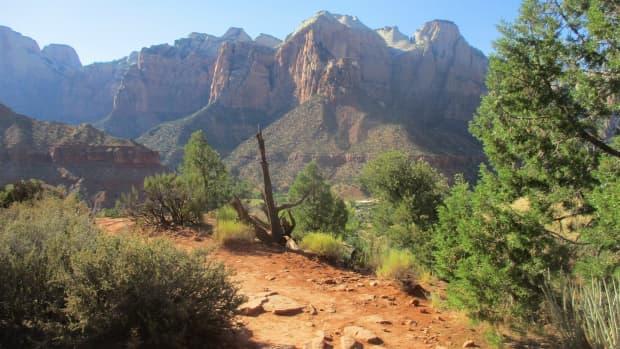 zion-canyon-hikes