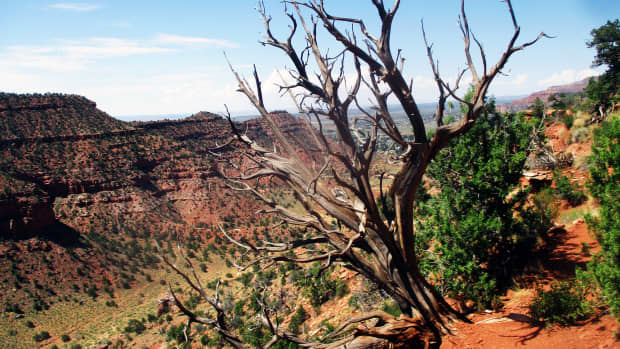 hiking-trails-in-kanab-utah