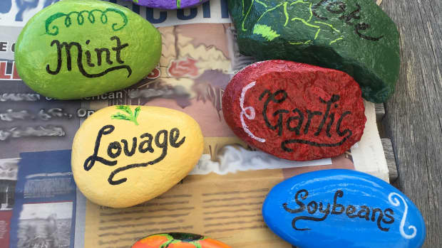 how-to-make-painted-rock-plant-markers