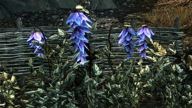 the-burial-customs-and-death-practices-of-the-elder-scrolls