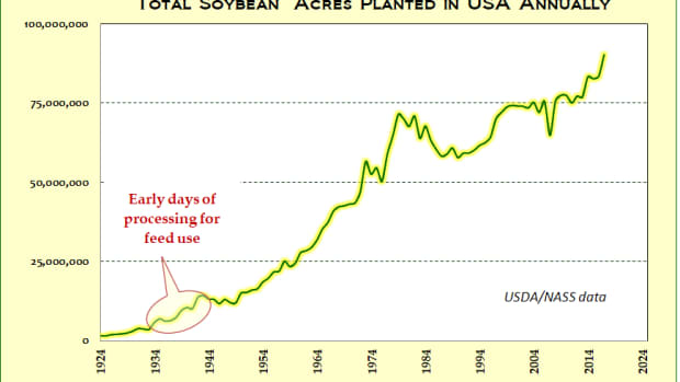 soybeans-return-to-china