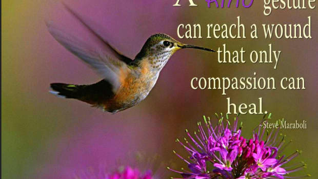10-ways-to-become-a-more-compassionate-human-being