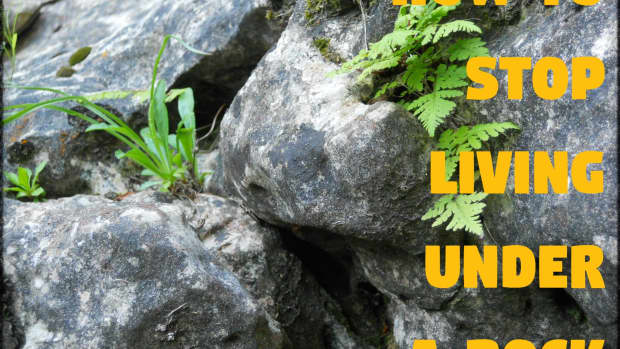 how-to-stop-living-under-a-rock