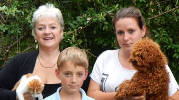 noahs-ark-rochechouart-rescuing-and-re-homing-animals-in-need