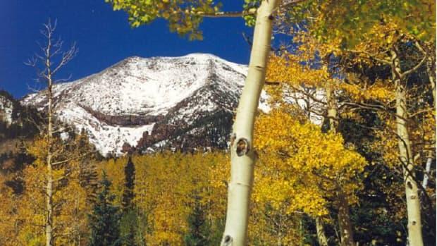 hiking-the-kachina-trail-in-flagstaff-arizona